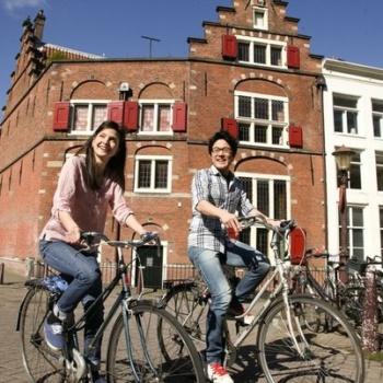 Образование в Голландии