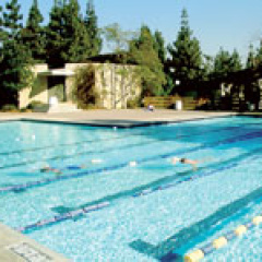th_Small634341654532880994_Campus-Pools
